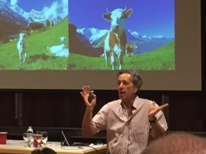 Picture of Moshe Rosenberg