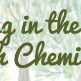 """Field Trip to """"Walking in the Woods with Chemistry"""" Exhibitat the UC Davis Arboretum"""