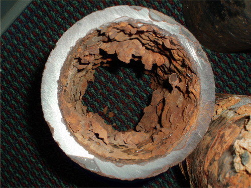 Pipe scale from a ductile iron water main in Iowa. Note the iron-containing nodules that have formed on the inside of the pipe, which could dissolve or break away in the presence of corrosive water. Photo credit: Richard L. Valentine.