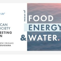 Student Travel Grant to the ACS National Meeting in New Orleans