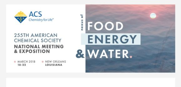 Student Travel Grant to the ACS NationalMeeting in New Orleans