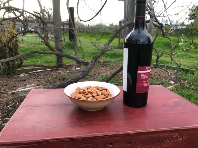 a bowl of almonds and a wine bottle on a red table with grape vines in the background