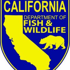 Cal Dept. of Fish and Wildlife Looking for Scientist to Join the Petroleum Chemistry Lab
